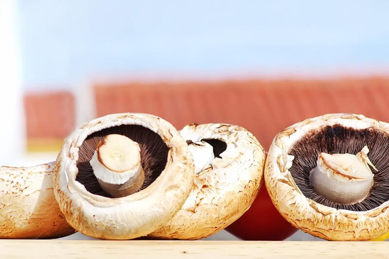 【きのこ菌活とは?】いいことづくしのきのこ菌活で冷え性改善・美容効果アップ!飽きないレシピも紹介!〜ダイエット効果はいかほど?〜