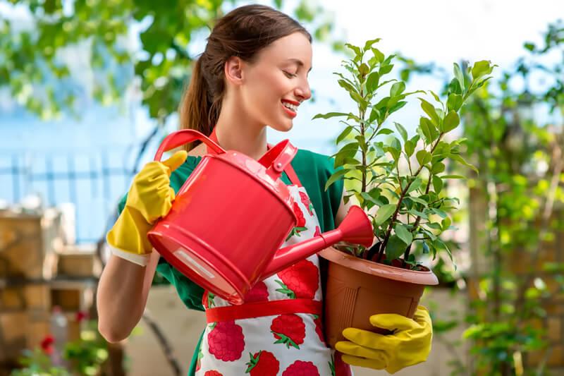 【初心者さん歓迎】おしゃれなベランダ菜園を簡単に始めませんか?