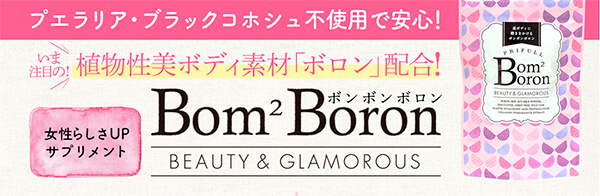 ボンボンボロン-1