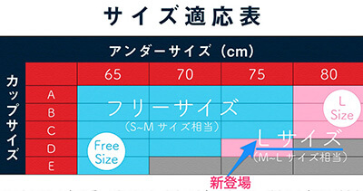 ナイトブラ ・モテフィット・ サイズ表