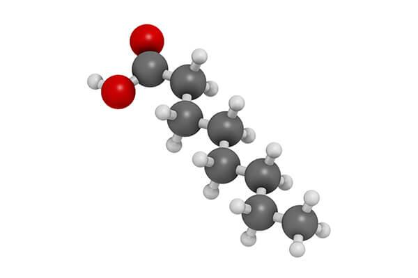 中鎖脂肪酸