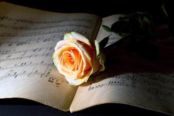 クラシックイメージ6