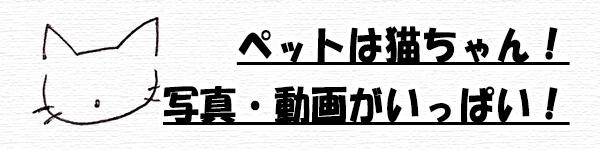ユ・アインイメージ1